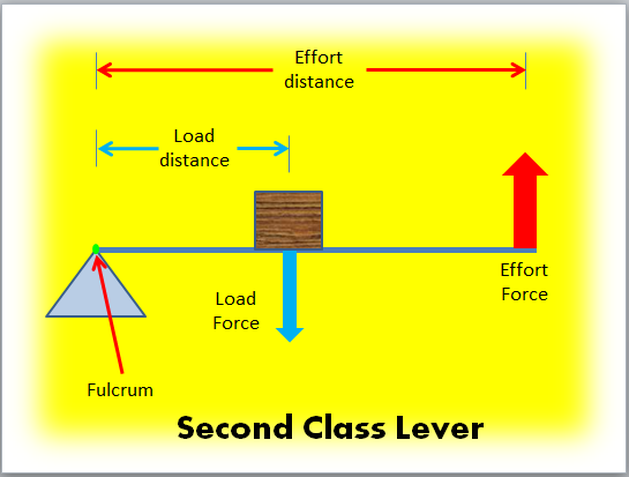 how to remember lever classes